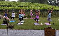 yoga in the vineyard serpent ridge outside